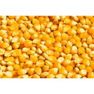 Carp Old School kukurydza suche ziaorno + aromat truskawka 5 kg