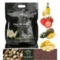Carp Old School Mix konopie/rzepik suche ziarno +aromat scopex 5 kg