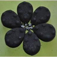 Ciężarek Grippon 120 gr czarny