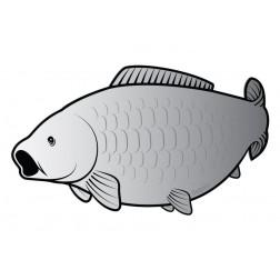 Delphin Karp Silver 795010080