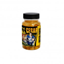 Invader Orzech Tygrysi Cesar - Squid/ Porzeczka 100 ml